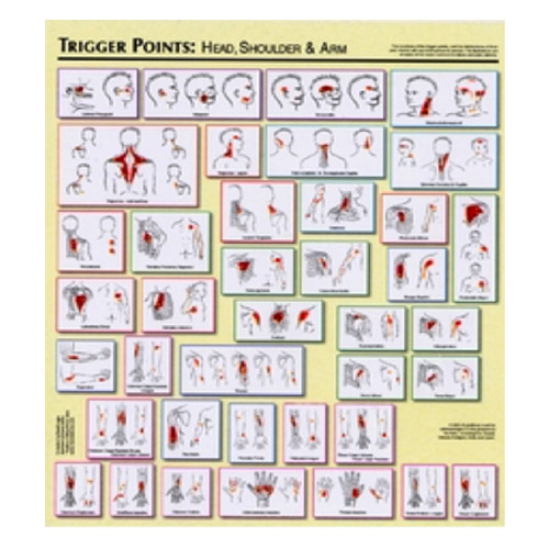 Chart-Trigger-Points-Legge-Top