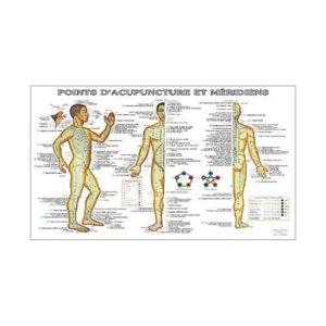 charte-acupuncture-fr-points-et-meridiens